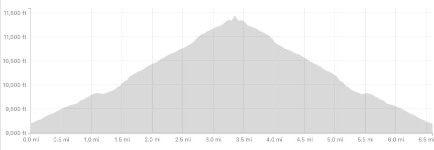 Twin Sisters Elevation Profile